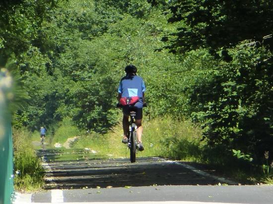 Muldental Radweg