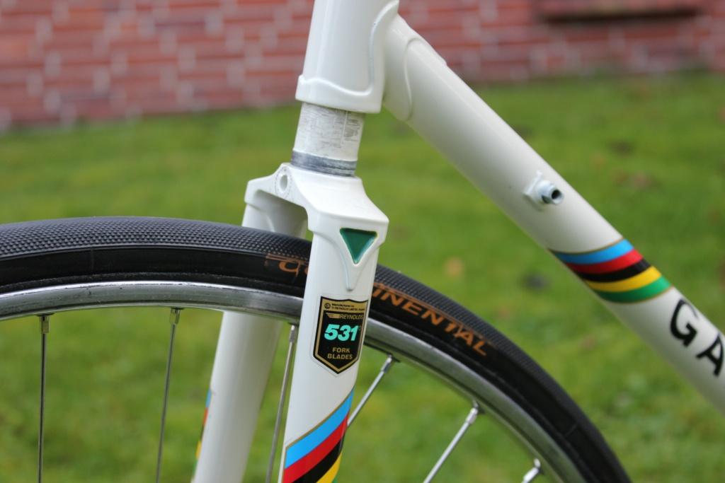 Mein Hollandrad, eine Fotogeschichte (Gazelle Champion im Aufbau)