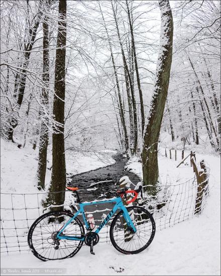 Winter im Murmelbachtal