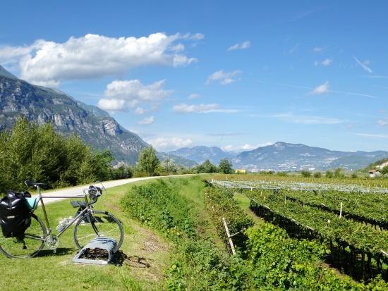 (für Thread) Etschtalradweg Rovereto-Bozen