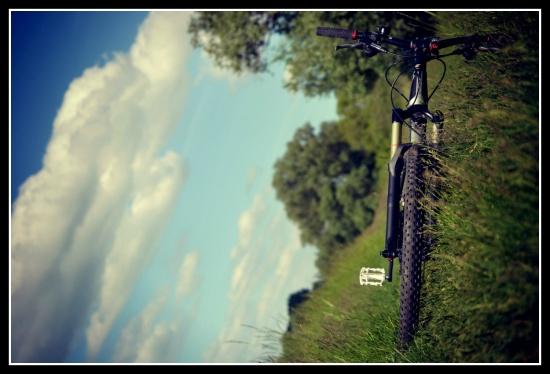bike^new