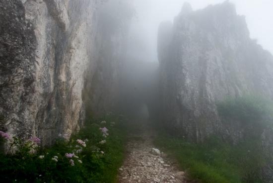 Monte Grappa (1 von 1)-11
