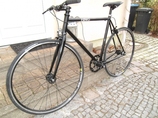 EINZIG 56 cm Campagnolo