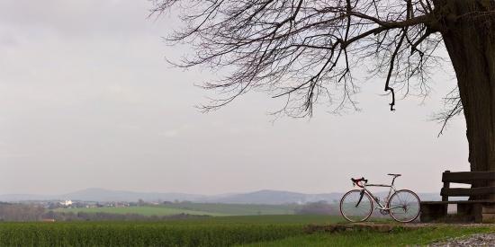 001 Cannondale zwischen Frankenthal und Rammenau