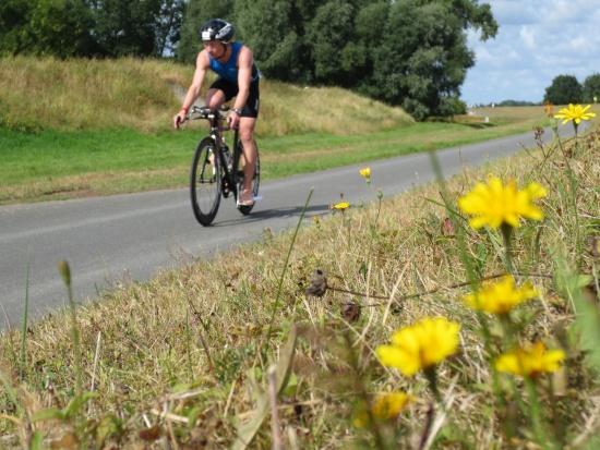 Triathlon Bleckede
