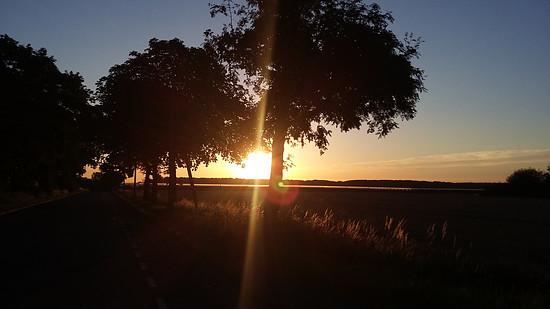 Sonnenaufgang 07-2015