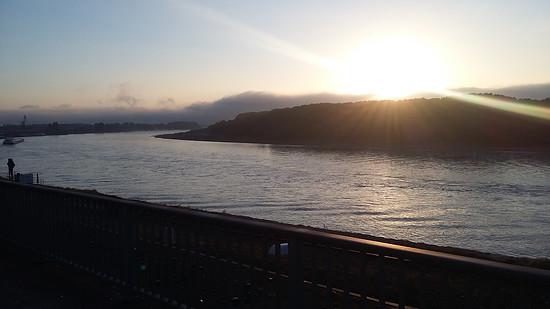 Der Rhein in Wesseling