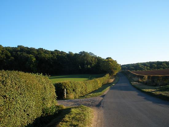 mdRnH - Bradmore Hill - unten