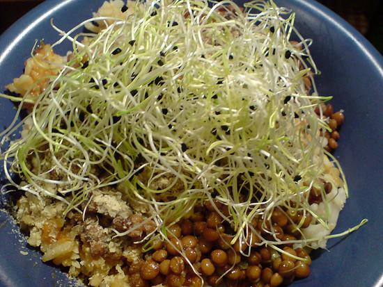 Reis und Linsen mit Zwiebelsprossen