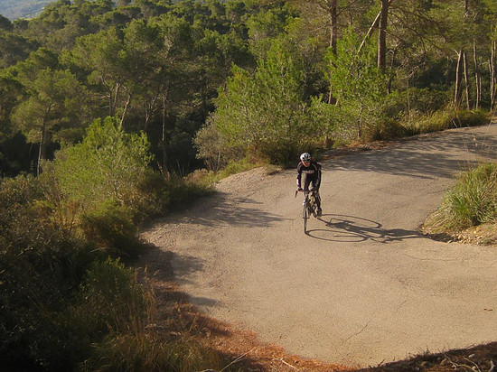 Mallorca: Randa