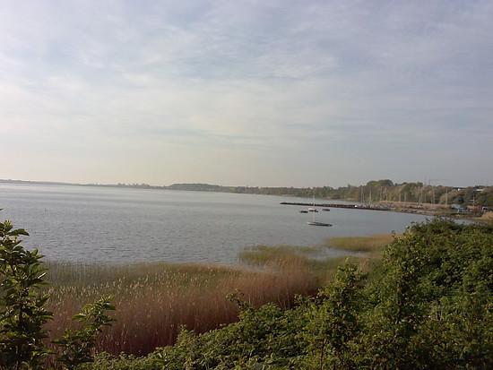 morgens am Strelasund