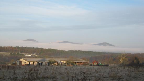 Morgennebel im Tal auf dem Weg zur Arbeit