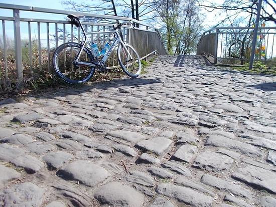 Mini Roubaix