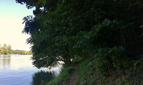 Singletrail nach Laufenburg