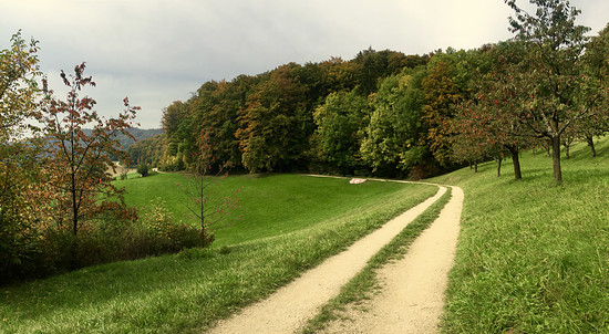 Rickenbacher Höhe