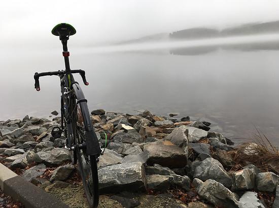 Nebel wie im Herbst