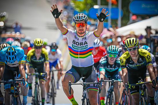 Peter Sagan im siegreichen Zielsprint der Tour Down Under
