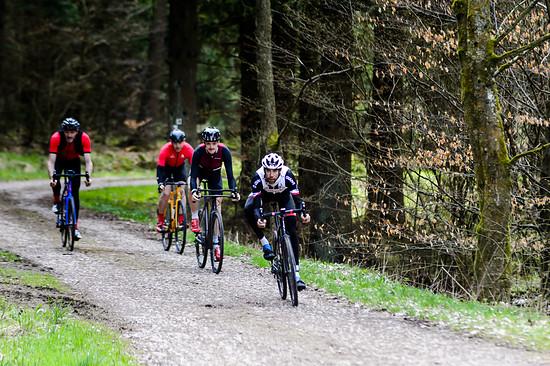 Die Region um Hellenthal in der Eifel ist dicht bewaldet