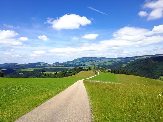 Steigweg - RUNTER!