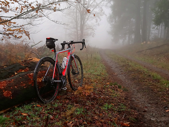 Cube Cross Race - Nebel vorraus