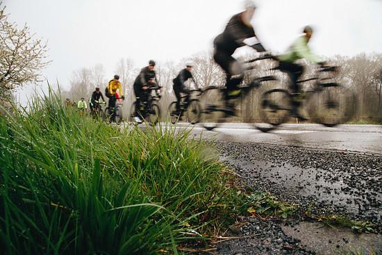 Specialized Roubaix 2019 I-9