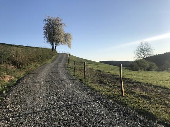 Auch grobe Schotterwege wie dieser lassen sich mit breiteren Reifen und geringem Druck fahren, sind aber das Ende des Spektrums