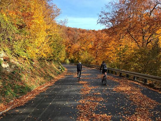 Herbstliche Neuffener Steige😊 Noch finden Belagsarbeiten statt und daher autofrei... Ein Traum!!!