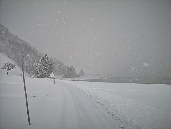 Winterwandern am Sihlsee
