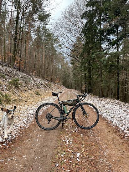 Winterfreuden für Mensch und Tier