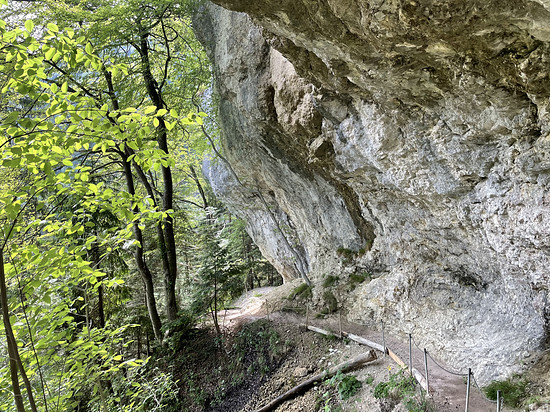 Passwang/Wasserfallen - Reigoldswil