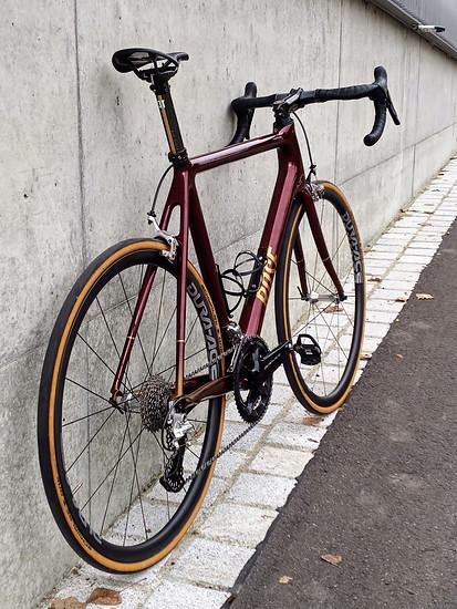 Rose Pro SL Carbon