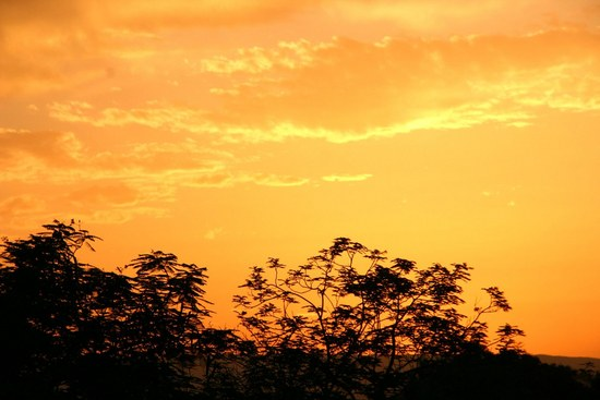Sonnenuntergang vom Nil