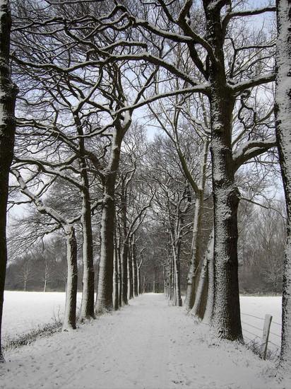 Winterwunderla nd Polsum