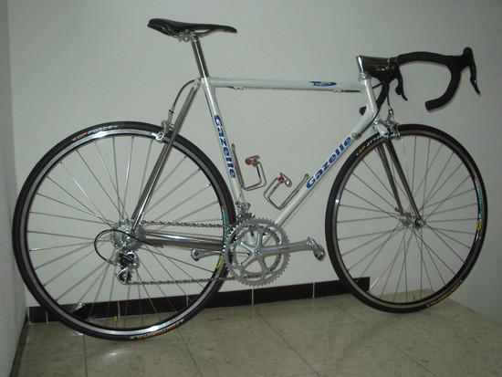 Gazelle007