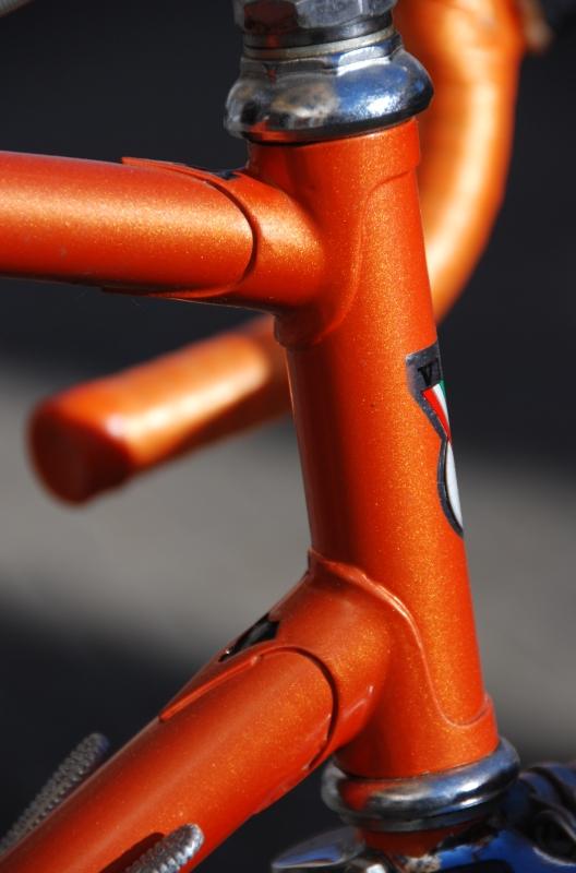 Vicini-orange-800-005