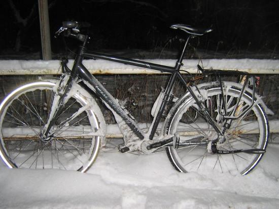 Die Winter-Alternative