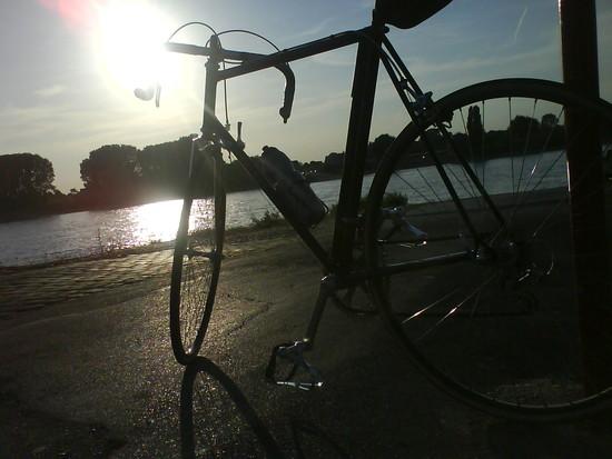 An der Rheinfähre