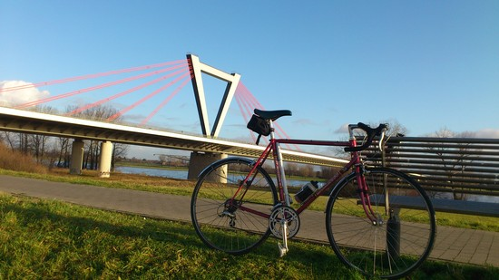 Entspannt & sonnig am Rhein