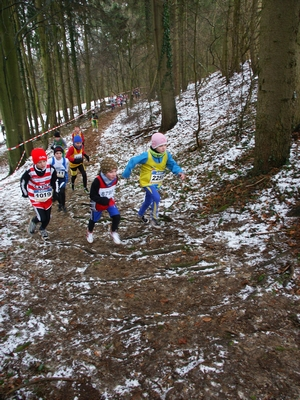 Cross Esch 21 02 10
