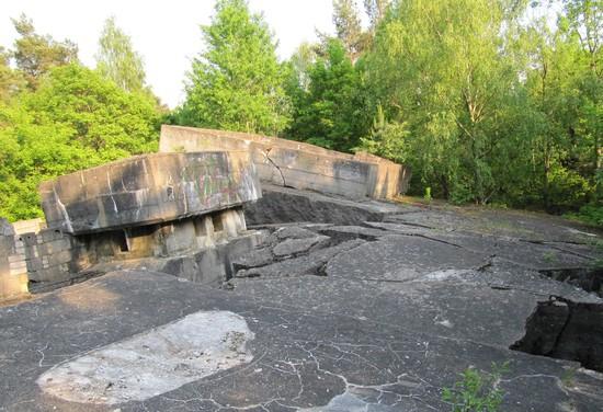 Dach Koralle Bunker