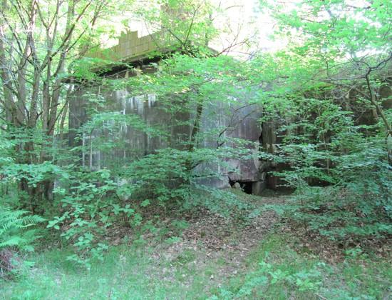 Eingang Koralle Bunker